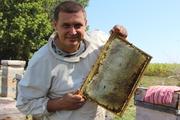 Мед продаю оптом гречишный,  горно-степное и полевое разнотравье